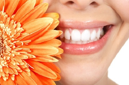 oclusión y mandíbula